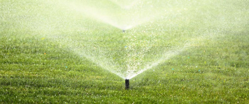 … Reduce your watering bill