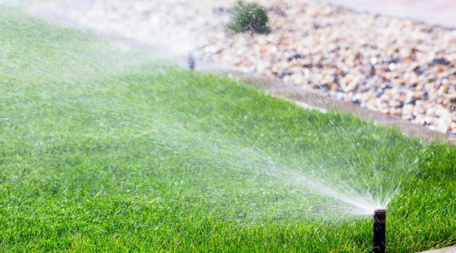 A DHI Sprinkler System Can…